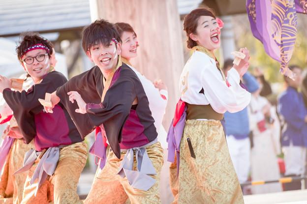 京都さくらよさこい2017 音錦