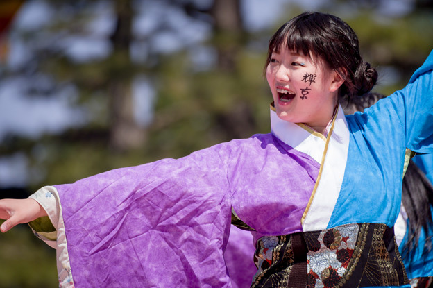 写真: 京都さくらよさこい2017 京炎そでふれ!輝京