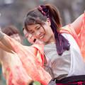 写真: どまつり夜桜in岡崎2017 Meetiα