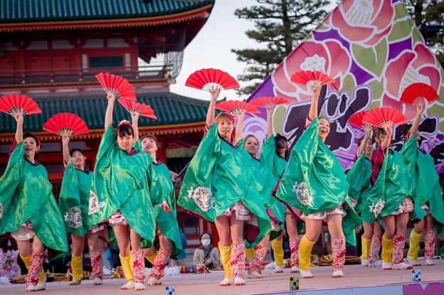 京都さくらよさこい2017 桜道里