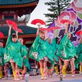 写真: 京都さくらよさこい2017 桜道里