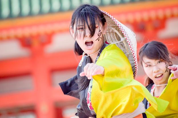 京都さくらよさこい2017 結