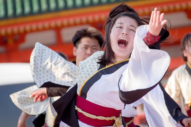 京都さくらよさこい2017 有閑踊り子一座 飛舞人