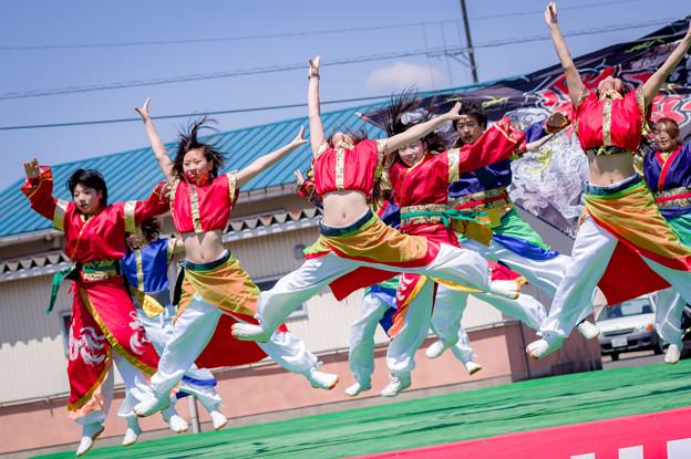 賤岳春乱舞2017 チーム飛龍