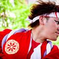写真: わいわい若宮2017 岐阜聖徳学園大学 柳