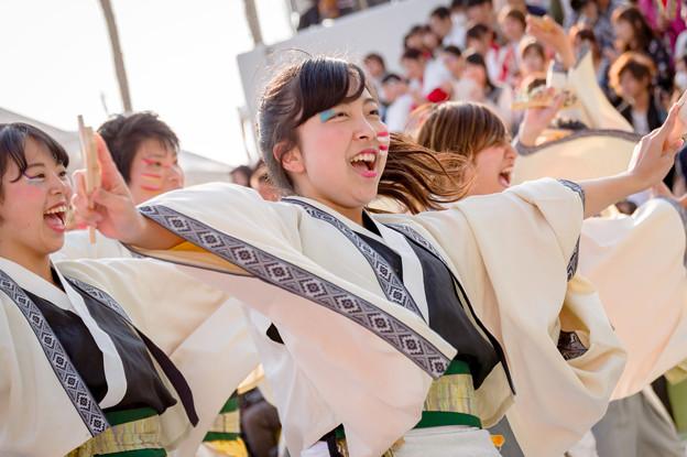 worldあぽろん2017 京都文教大学よさこいサークル風竜舞伝