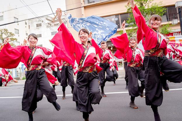 踊っこまつり2017 神戸大学よさこいチーム山美鼓