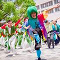 犬山踊芸祭2017 ピーマンサンバ隊