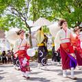 Photos: 犬山踊芸祭2017 笑TIME