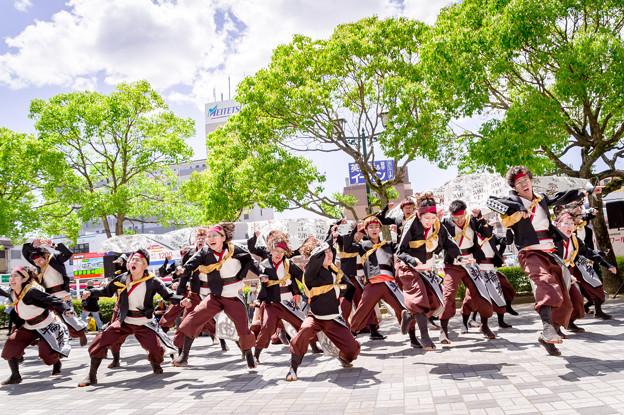 犬山踊芸祭2017 京炎そでふれ!輪舞曲