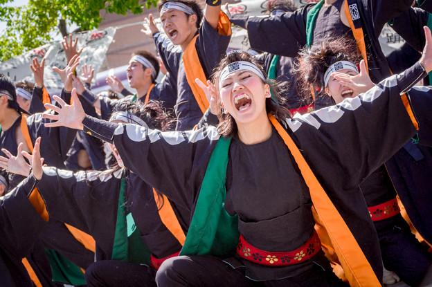 犬山踊芸祭2017 笑゛