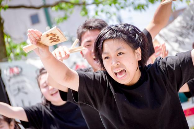 犬山踊芸祭2017 岐阜聖徳学園大学 柳