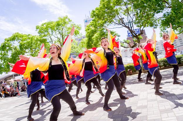 犬山踊芸祭2017 極津