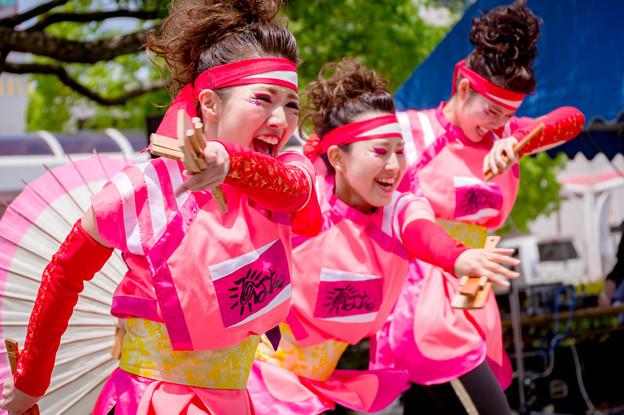 犬山踊芸祭2017 ひなた