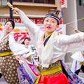 写真: 踊っこまつり2017 舞ぇぇ華