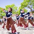 写真: 犬山踊芸祭2017 兆