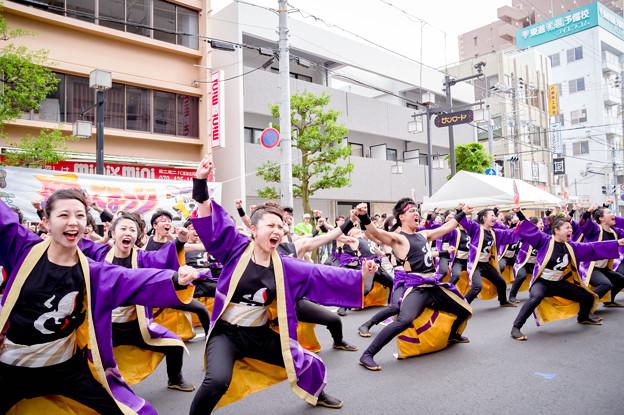 踊っこまつり2017 岡山うらじゃ連蓮雫
