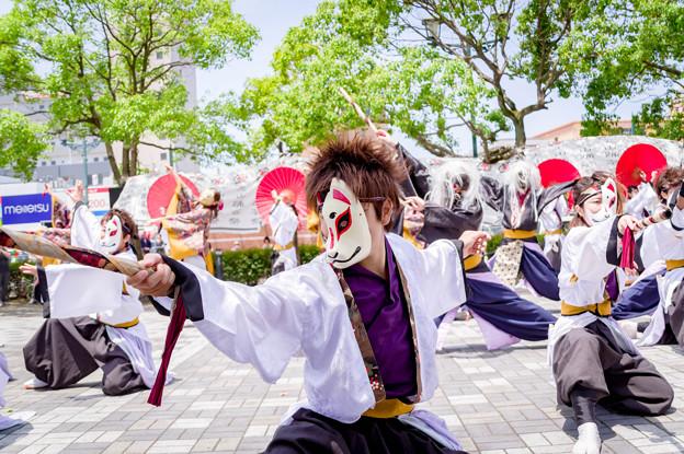 犬山踊芸祭2017 KanoN