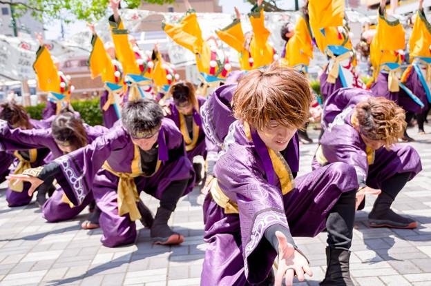 犬山踊芸祭2017 天狗ぅ