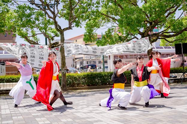犬山踊芸祭2017 愛知江南短期大学よさこいサークル飛鳥~asuka~
