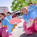 写真: 犬山踊芸祭2017 志響~sikyou~