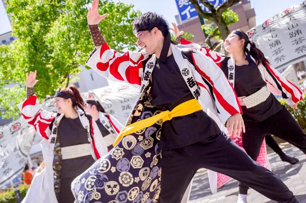 写真: 犬山踊芸祭2017 ?燐