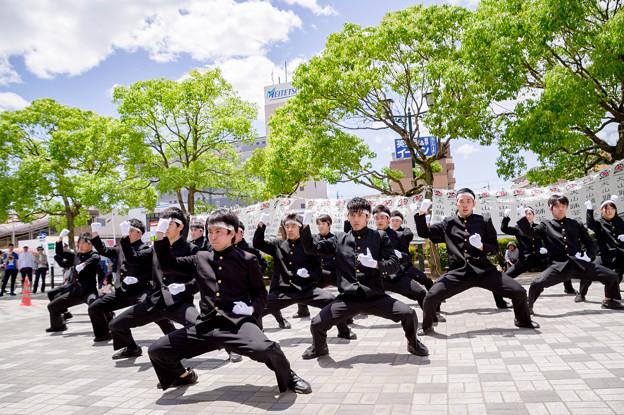 写真: 犬山踊芸祭2017 青春応援団 我無沙羅