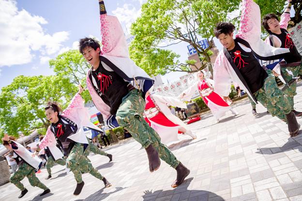 犬山踊芸祭2017 しなの大和