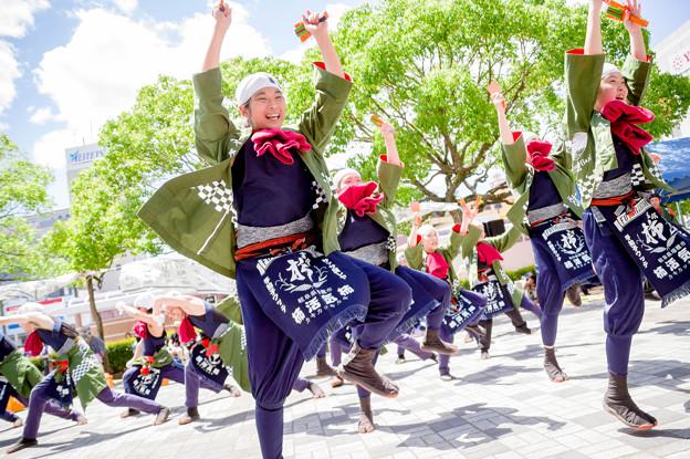 犬山踊芸祭2017 富有樂猩