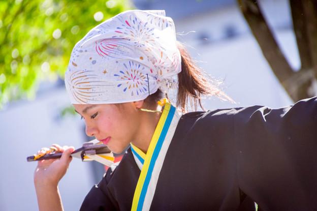 犬山踊芸祭2017 桑名SEVENs