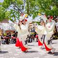 犬山踊芸祭2017 半布里