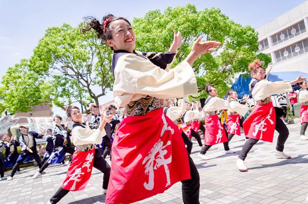 犬山踊芸祭2017 笑舞
