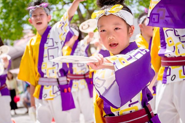 犬山踊芸祭2017 笑゛Jr.