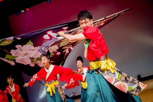 堺よさこいかえる祭り2017 バサラ風流倭尽 心舞