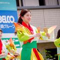 踊っこまつり2017 播磨小野町きんぎょ屋