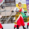 踊っこまつり2017 播磨乃國☆よさこい衆 嵐華龍神