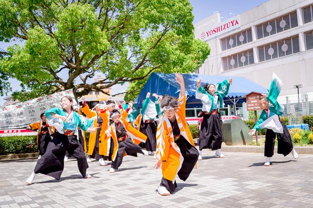 犬山踊芸祭2017 鷹姫ouki