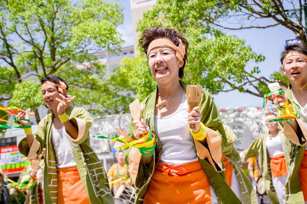 犬山踊芸祭2017 菜花