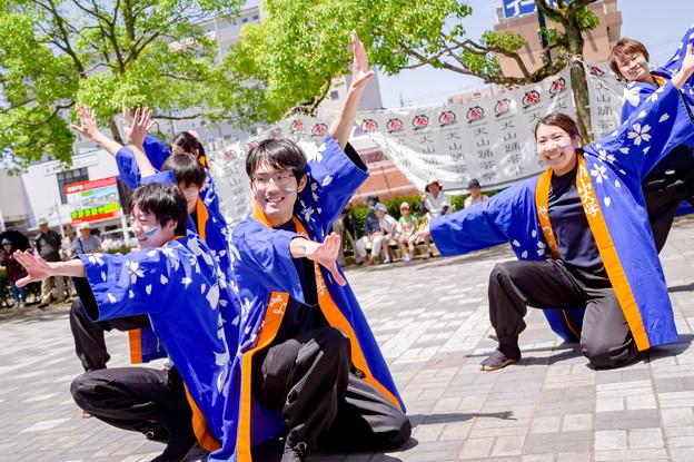 犬山踊芸祭2017 南山大学よさこいサーク ルせつな