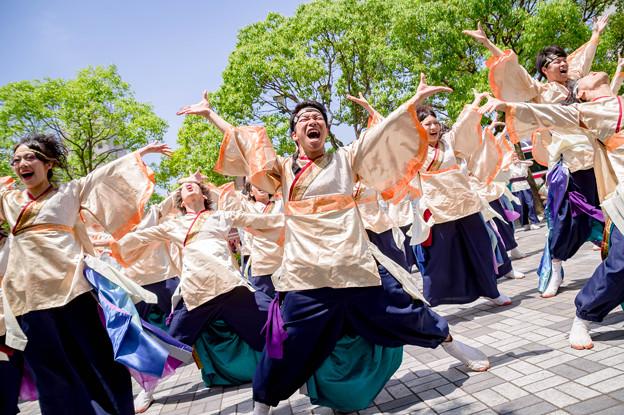 犬山踊芸祭2017 夜宵