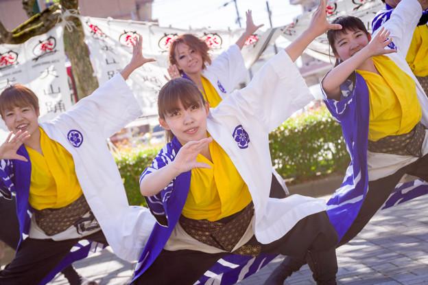 犬山踊芸祭2017 人繋ぎ