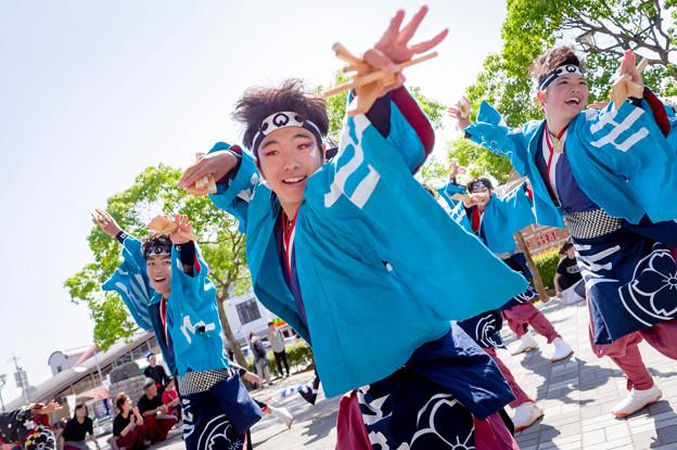 犬山踊芸祭2017 あさぎ