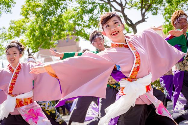 犬山踊芸祭2017 岐阜大学よさこいサークル騒屋