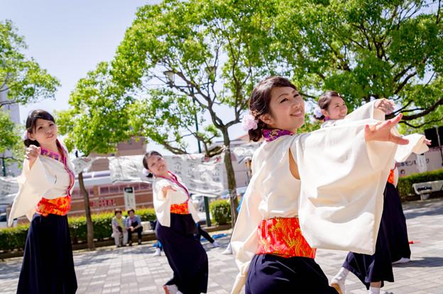 犬山踊芸祭2017 己道