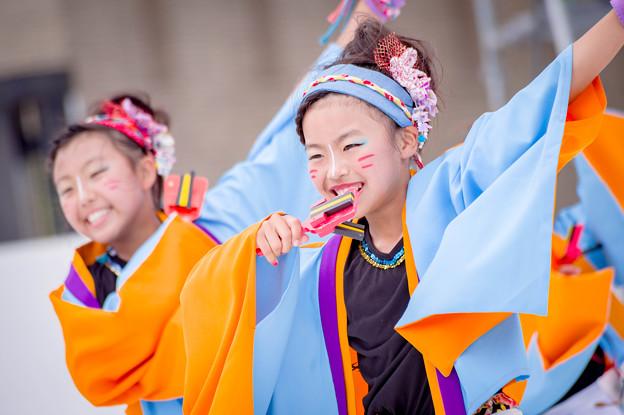 はるえイッチョライでんすけ祭り2017 みのり参舞~狐童~