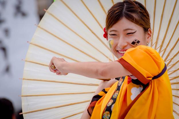 はるえイッチョライでんすけ祭り2017 福井大学よっしゃこい