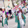 よさこい祭り2017 升形地域競演場 纏り衆縁陣