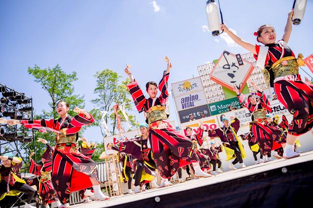 よさこい全国大会2017 セントラルグループ踊り子隊