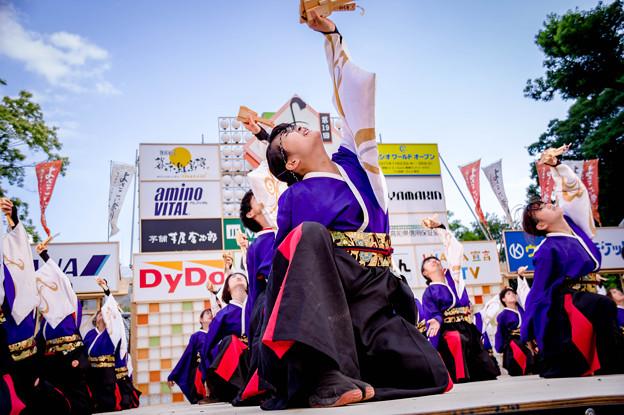 """よさこい全国大会2017 早稲田大学""""踊り侍"""""""