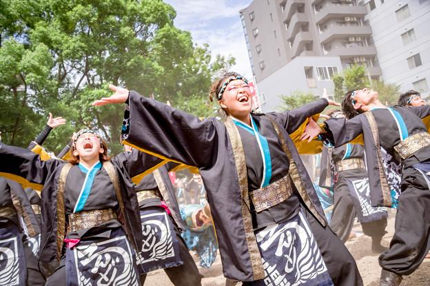 にっぽんど真ん中祭り2017 京炎そでふれ!輪舞曲